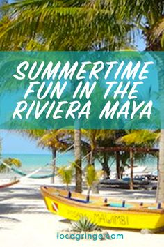 Summertime in the Riviera Maya rocks though some may say we have summer all year long! Check out our summer deals with our local partners in all Riviera Maya