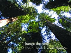 Change the Mind by The Ishaya Foundation