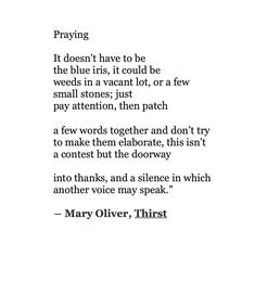Mary Oliver, Spiritual Thoughts, Love Signs, Solitude, Pay Attention, Poems, Prayers, Thankful, Feelings
