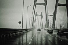 That noise, those rains, sealink # pictureperfect