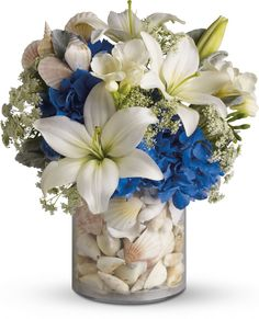 Everything's Beachy by Teleflora  Light blue hydrangea, white asiatic lilies, fragrant white freesia, delicate Queen Anne's lace and stems of dusty miller are delivered in a clear vase full of seashells.