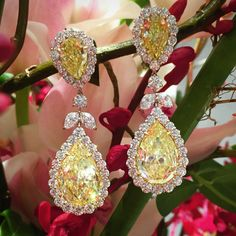 There are few things more beautiful in this world than sunny yellow diamonds and brightly colored flowers These rays of sunshine sold in our June sale for $427,500! #christiesjewels #diamondearrings #yellowdiamondearrings #bulgari