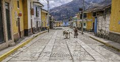 Rush hour in Chavin, Peru. lol Feel free to share my images with your online friends. If you enjoy my images, like my page. My latest exploits can be found at http://brittrunyon.com Image prints, greeting cards and more at http://britt-runyon.pixels.com