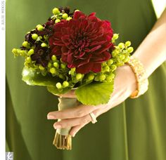 No Day More Perfect Than A Wedding Day!: Toss The Bouquet! - Wedding Day Pins : You're Source for Wedding Pins! Simple Wedding Bouquets, Red Bouquet Wedding, Simple Weddings, Wedding Colors, Wedding Flowers, Green Weddings, Red Wedding, Single Flower Bouquet, Small Bouquet
