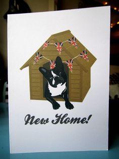 New Home - French Bulldog