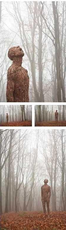 Anna Gillespie  - Taste the Rain