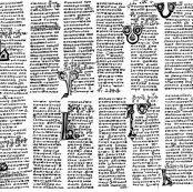 Fabric -Manuscript
