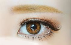 NEO Princess Caramel Brown color contact lenses. http://www.eyecandys.com/neo-princess-camel-brown/