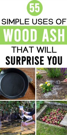 Uses Of Wood, Wood Ash, Lawn Fertilizer, Soil Ph, Snails, Compost, Good To Know, Survival, Veggies