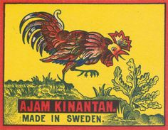 Rare large format matchbox label designed and published in Sweden.With the rapid growth of matchbox production at the start of the century, label design became the key differential point between brands. Matchbox Art, Circus Art, Wild Creatures, Vintage Circus, Graphic Design Posters, Cool Posters, Vintage Posters, Design Art, Artwork