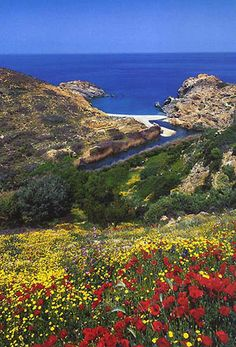 Beautiful photos from Ikaria island Samos, Ikaria Greece, Wonderful Places, Beautiful Places, Places To Travel, Places To Visit, Holiday Places, Greece Islands, Greece Travel
