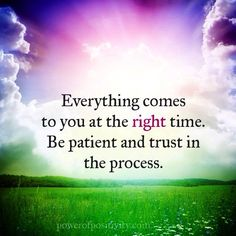Everything comes to you at the right time. Be patient and trust in the process.   #powerofpositivity #positivewords #positivethinking #inspiration #quotes
