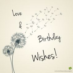 Love and Birthday Wishes!
