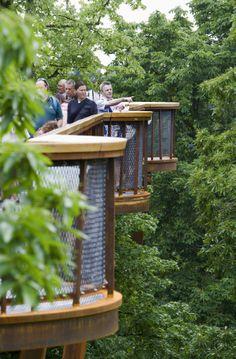 Kew Gardens, Botanical Gardens, Outdoor Living, Outdoor Decor, Restaurant Design, Walkway, Garden Bridge, Carousel, Living Spaces