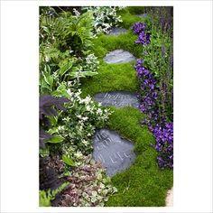 A Literary Garden - RHS Chelsea Flower Show 2011