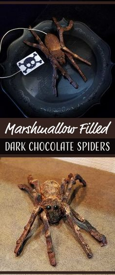 I do have to warn you, cocoa spiders have a season. Because of their sweet chocolate shell and their crunchy marshmallow centers, they are a treat best served…and made…in the cold...which means they're perfect for Halloween!