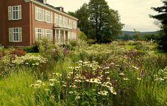 Bonn Garden by Piet Oudolf #gardening