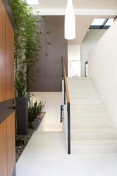 The Russian Hill Residence by John Maniscalco Architecture » CONTEMPORIST
