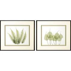 Phoenix Galleries Woodlands Framed Prints - Woodlands Series