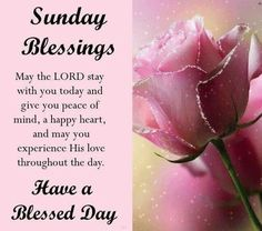 Blessed Sunday Morning, Sunday Prayer, Sunday Morning Quotes, Good Morning Sister, Have A Blessed Sunday, Sunday Quotes Funny, Sunday Love, Good Morning Inspirational Quotes, Morning Blessings