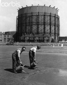 Groundsmen Prepare for Oval Test Match. Marl fertilizer is poured onto the turf between the wickets in preparation for England's fifth and final Test match against Australia. 1953