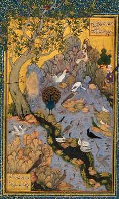 Parliament of the Birds. Mantiq Ut'tair, Farahaddin Attar. Persian Miniatures on Tumblr