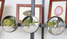 Make awesome driftwood storage with Sugru   Ideas   Darby Smart