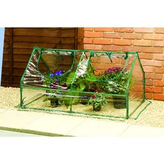 Wilko PVC Cloche Greenhouse with 2 Openings