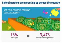 """We know that when students have experiences such as tending a school garden or visiting a farm, they'll be more likely to make healthy choices in the cafeteria."" Tom Vilsack, US Secretary of Agriculture"