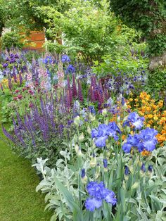The top 10 trends from the Chelsea Flower Show 2015 Fantastic planting in the Healthy Cities garden - mix of purple, blue, pink and orange with silver-green foliage Amazing Gardens, Beautiful Gardens, Beautiful Flowers, Café Exterior, Craftsman Exterior, Exterior Remodel, Exterior Colors, Exterior Paint, Garden Ideas To Make