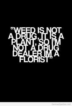 Weed is not a drug, it is a plant, so I'm not a drug dealer, I'm a florist #marijuana #marijuanaquotes http://budposters.com/