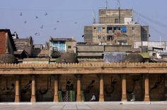 A mosque in Ahmedabad, Gujarat