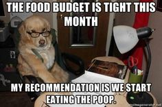 Financial Adviser Dog cuts the budget. - Imgur. This is making me laugh way more than it should.