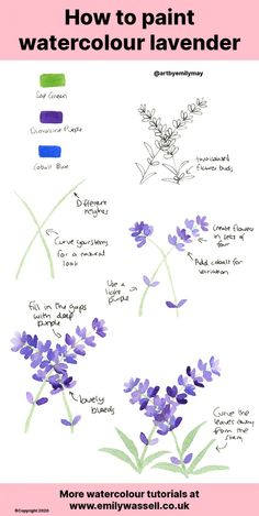 Watercolour Tutorial: How to Paint Lavender - Emily Wassell Watercolor Beginner, Watercolor Paintings For Beginners, Watercolor Art Lessons, Watercolor Techniques, Watercolor Cards, Floral Watercolor, Watercolour How To, Watercolour Step By Step, Watercolor Pencil Art
