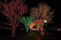 3. Holiday Lights On The Lake – 700 Park Avenue, Altoona, PA 16602