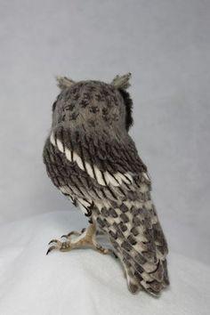 Kiyoshi Mino // Needle Felted Animals #feltowls