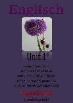 5.Klasse #Unit 1 RB  #Realschule #Uebungen für eine #Schulaufgabe / #Klassenarbeit / Lernzielkontrolle. Home, classroom, numbers, has - have got, this/that - these/those, a - an, personal pronouns, questions words, singular- plural. 220 Seiten