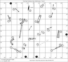 Agility Course maps
