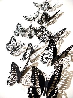 Butterflies~available via Xylocopa. Image/Design c.  Xylocopa Design 2007-12