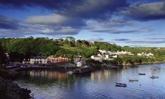 glandore - Google Search