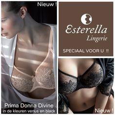 Toonaangevend in exclusieve Lingerie Badmode en Loungewear Esterella Lingerie Raadhuisstraat 40 Heerlen. Of shop online https://www.esterella.nl/