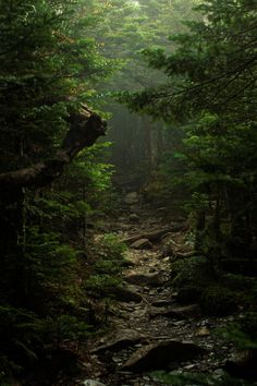 lori-rocks: into the unknown…. by Toshiuki