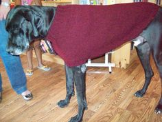 This is the Ozzie sweater – it comes in one size: large but pattern is easily adjustable by tweaking the number cast on. There is a noticeable lack of large dog sweater patterns, yet there are many large breeds such as weimaraners, boxers, Dobermans, etc that can use a little extra warmth come winter time.