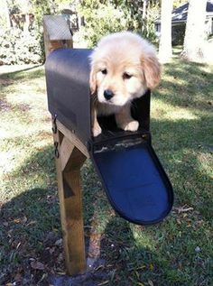 You've got mail....