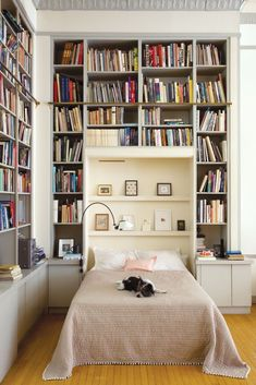 Whoa! Check out all of the awesome shelving in this bedroom! There is so much room for books, trinkets, and art in this space. Also, what a cute little dog!