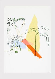 Alicia Galer | Plant Illustration