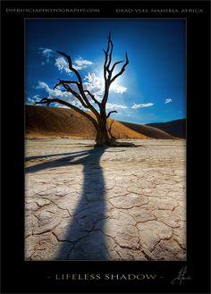 Lifeless Shadow - Dead Vlei, Namibia, Africa farbspiel  http://media-cache6.pinterest.com/upload/108930884707150792_9imuxA2J_f.jpg