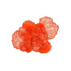 Interior HomeScapes offers the Flower Wall Art, Coral, LG by Phillips Collection. Visit our online store to order your Phillips Collection products today. Metal Flower Wall Decor, Metal Flowers, Floral Wall, Starburst Wall Decor, Medallion Wall Decor, Dandelion Yellow, Phillips Collection, Large Wall Art, Colorful Decor
