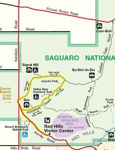 Saguaro National Park Scenic Drive 7 am sunset Saguaro East