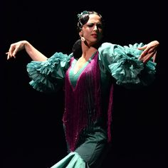 Focus-on-Flamenco-Memoria-Antigua-Aga-Khan-Museum-05.jpg (800×800)